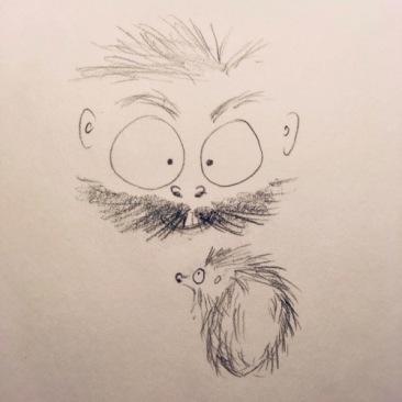 hegehog in my garden3